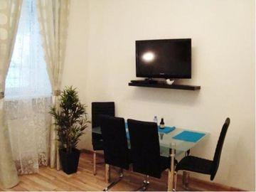 Apartament Enenkel 7/5 w Wiedniu-wynajem krótkoterminowy