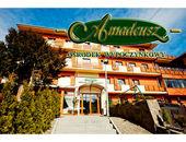 Ośrodek Wypoczynkowy Amadeusz