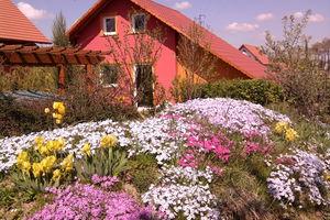 Mały domek z widokiem na Karkonosze